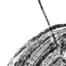 logo.8